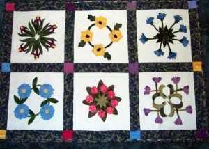 This is Dottie Olsons' door quilt...four of the blocks were done by her...before she lost her eyesight to sew...two of the blocks..pink flowers and Iris were done by  me,( needle turn applique..by hand). I assembled the quilt and machine quilted it and used a different technique to bind it ..completely by machine.